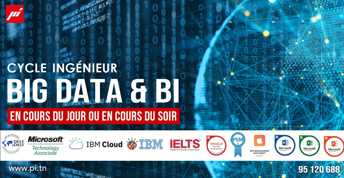 Big Data : usages et défis